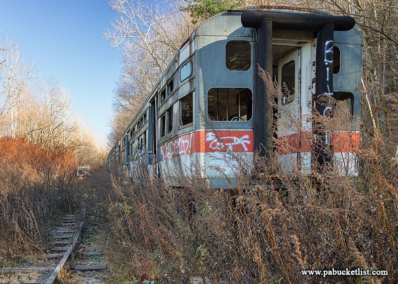 Nature is slowly reclaiming the tracks and streetcars at the Windber Trolley Graveyard.