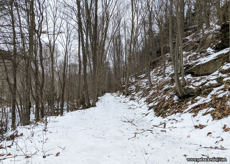 The old rail grade leading to the waterfalls on Dutchmans Run in the McIntyre Wild Area.