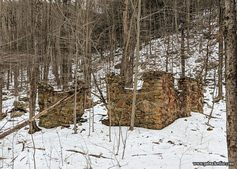 Old foundation along the rail bed leading to Dutchmans Run in the McIntyre Wild Area.