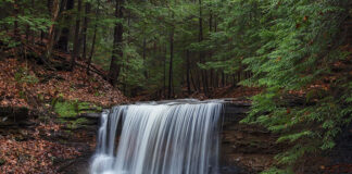 Grindstone Falls at McConnells Mill State Park in Lawrence County, Pennsylvania.