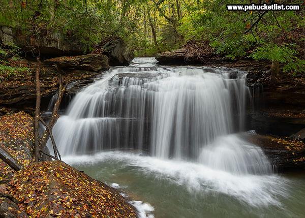 Fall foliage at Lower Jonathan Run Falls, Ohiopyle State Park