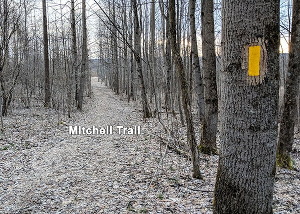 The yellow-blazed Mitchell Trail as it passes through Mitchell Field at Ohiopyle State Park.