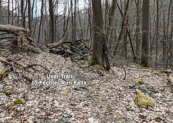 The user trail leading from Sugar Run Trail to Fechter Run Falls at Ohiopyle State Park