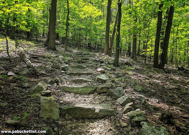 Stone steps along the Flat Rock Trail.