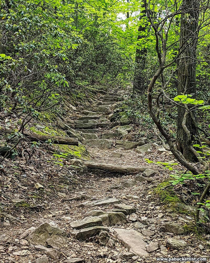 Another example of the rugged, rocky nature of the Flat Rock Trail.