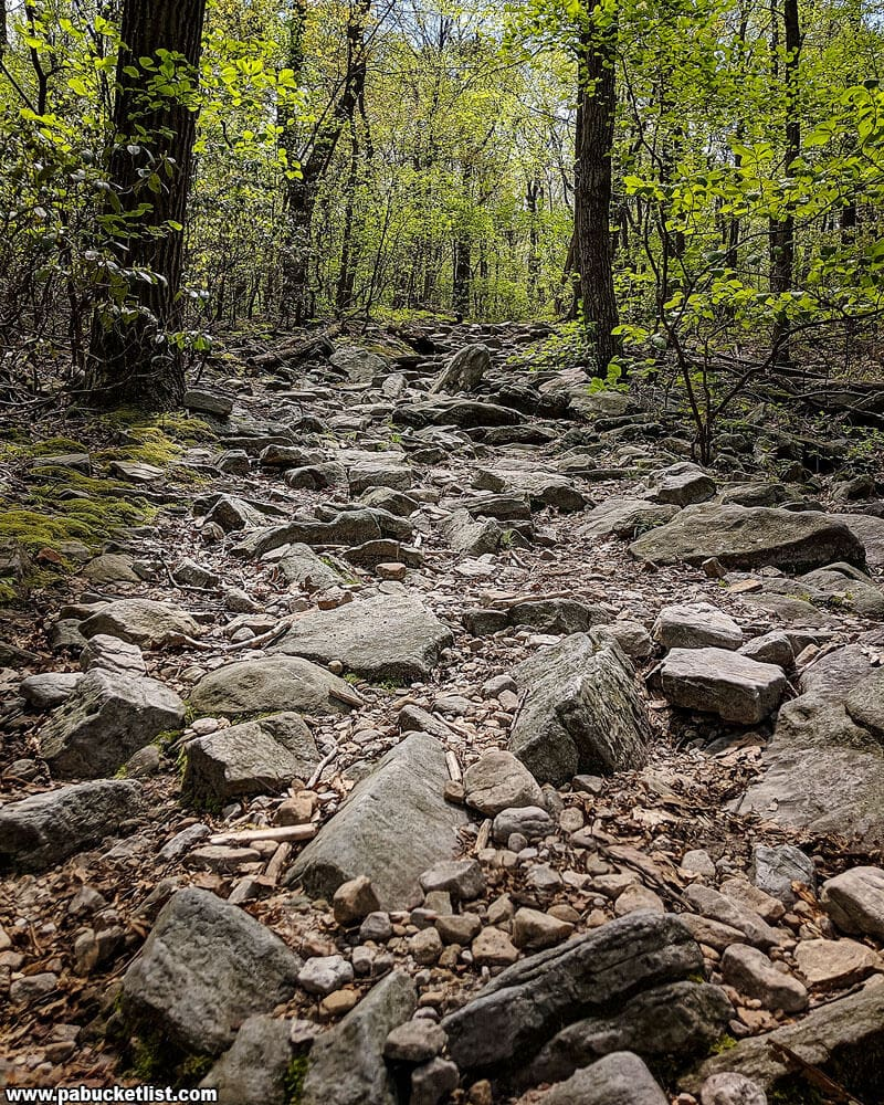 Rugged stones show what much of the Flat Rock Trail looks like.
