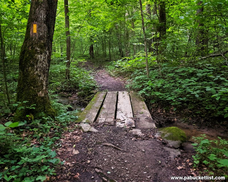 The First Bridge on the Jonathan Run Trail at Ohipyle State Park.