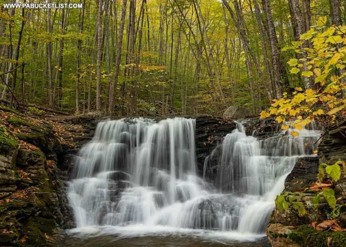 The first waterfall on Miners Run in the Loyalsock State Forest.