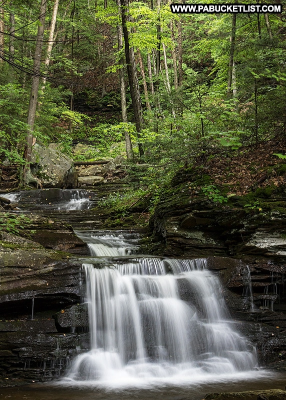A summer scene from the second waterfall on Miners Run in the Loyalsock State Forest.