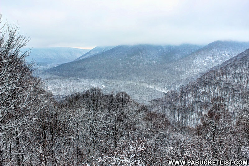 Low clouds on a snowy winter morning at Baughman Rock Overlook, Ohiopyle State Park.