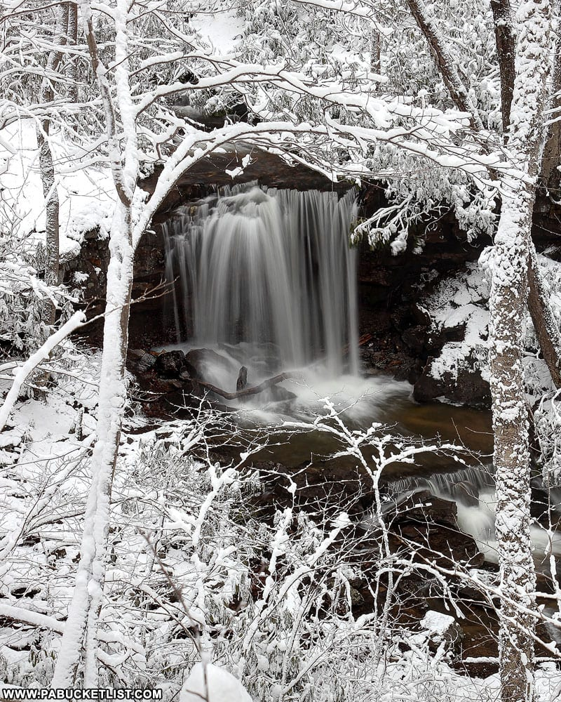 A winter view of Cole Run Falls from the Cole Run Loop trail.