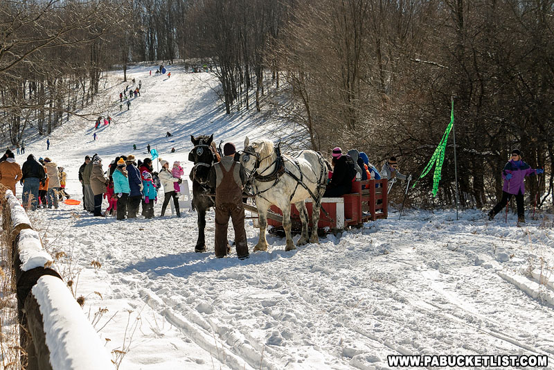The sleigh gets ready to depart from near the base of the Sugarloaf sledding hill.