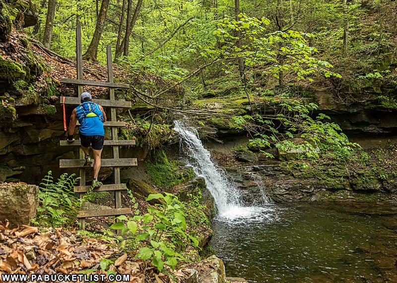 A competitor in the Worlds End Ultramarathon scales the ladder at Rode Falls on the Loyalsock Trail.