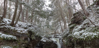 Snow and ice covering the Kitchen Creek gorge around Adams Falls.