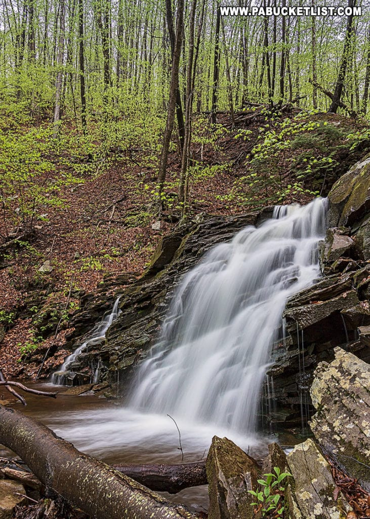 First Falls along Dutters Run in the springtime.