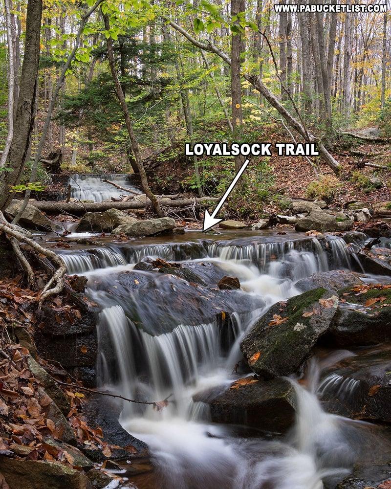 The Loyalsock Trail crossing Dutters Run below Sixth Falls.