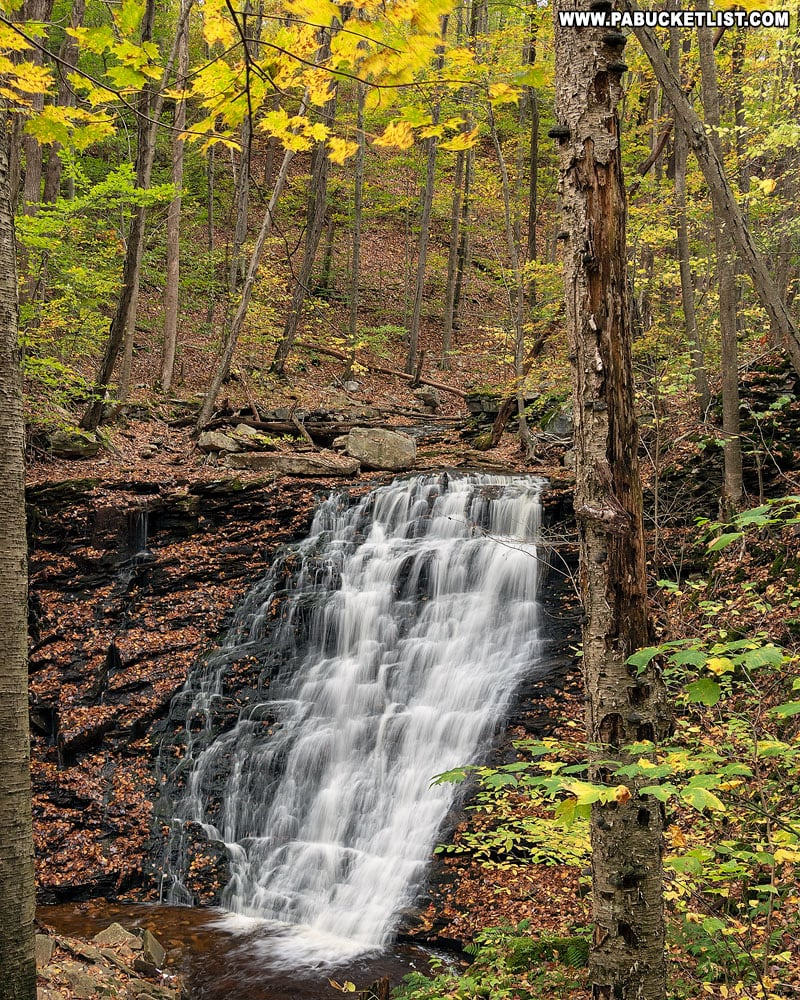 Second Falls on Dutters Run in October.