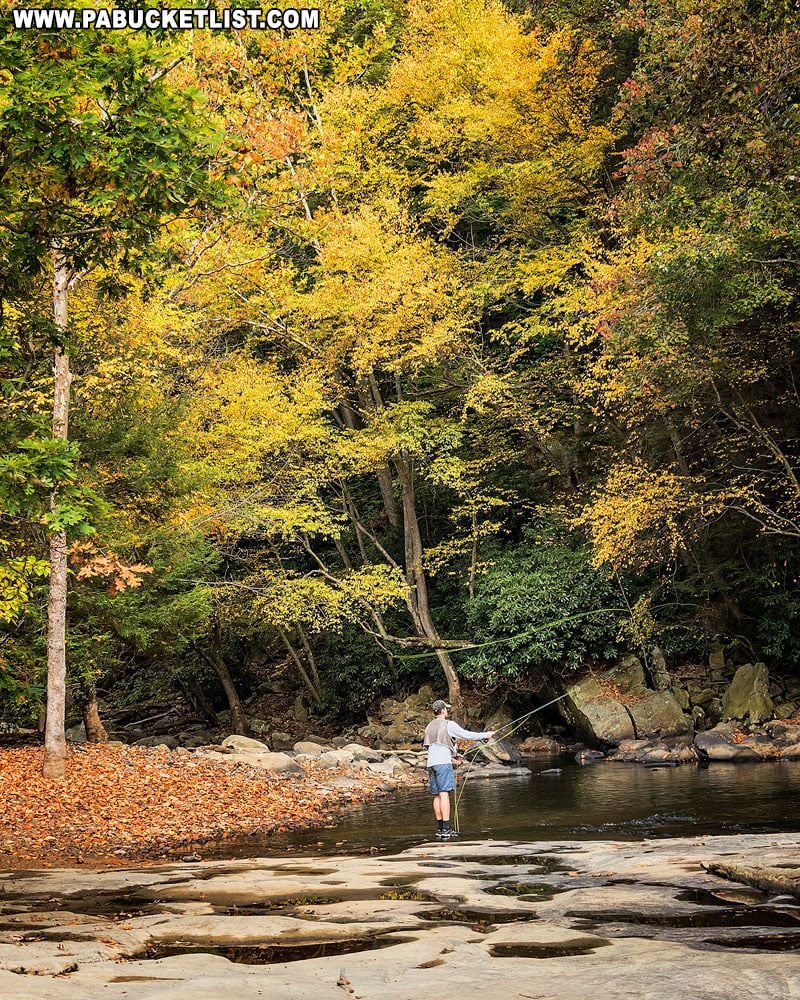Fly fisherman at Flat Rock along the Meadow Run Trail.
