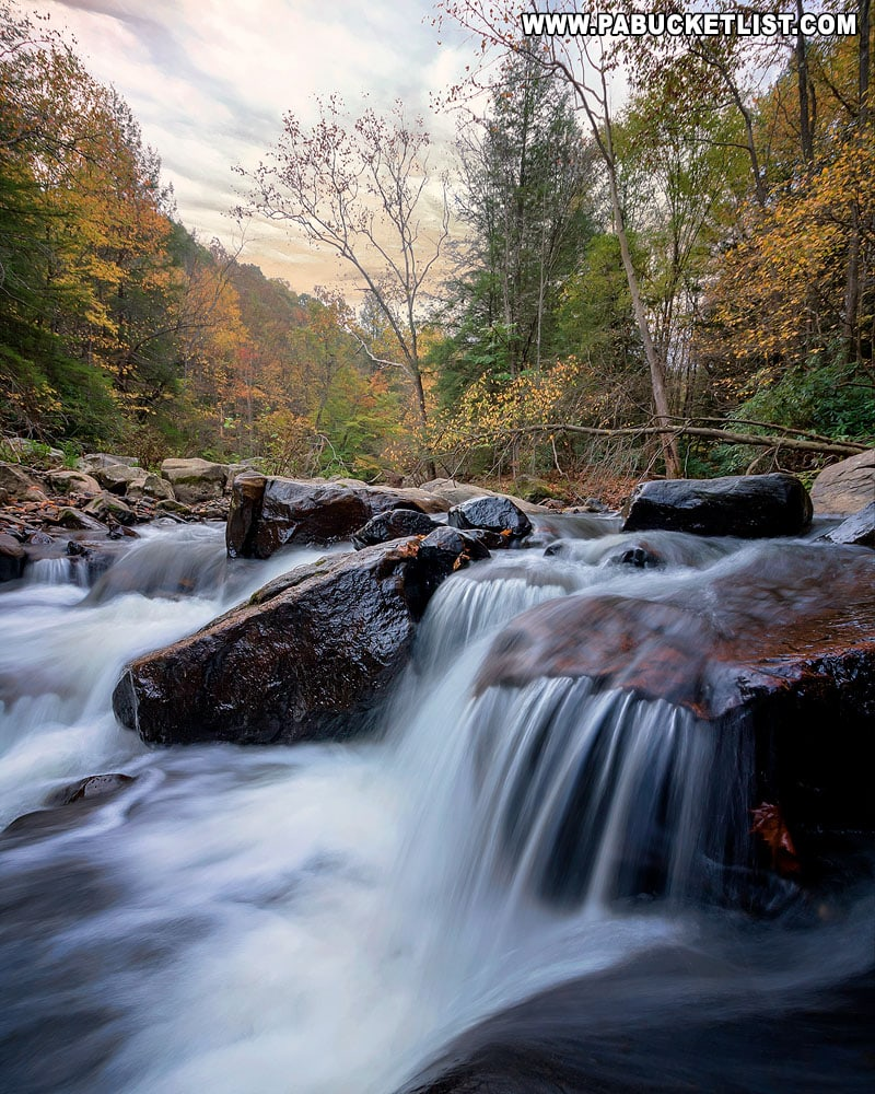 An autumn view of Meadow Run at Ohiopyle State Park.