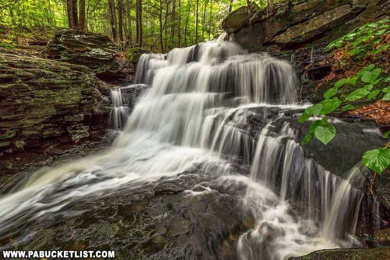 A springtime view of Pigeon Run on SGL 13 in Sullivan County.