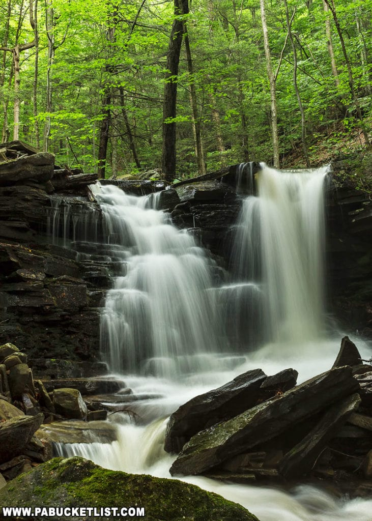 One of the smaller unnamed waterfalls on Pigeon Run.