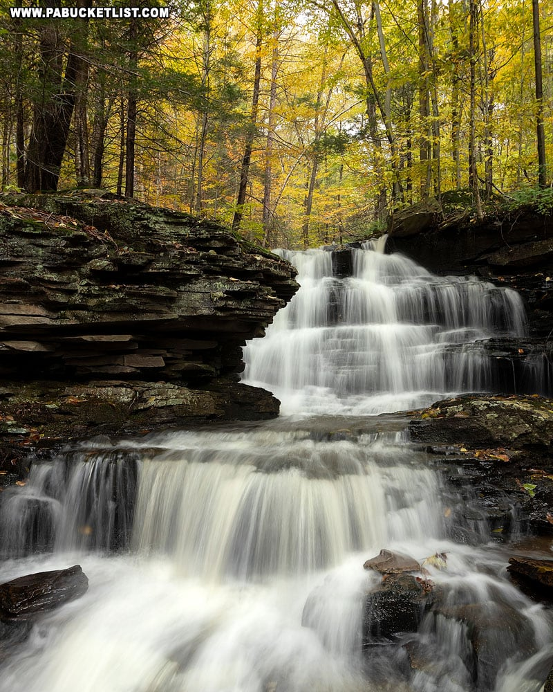 Autumn on State Game Lands 13 in Sullivan County.