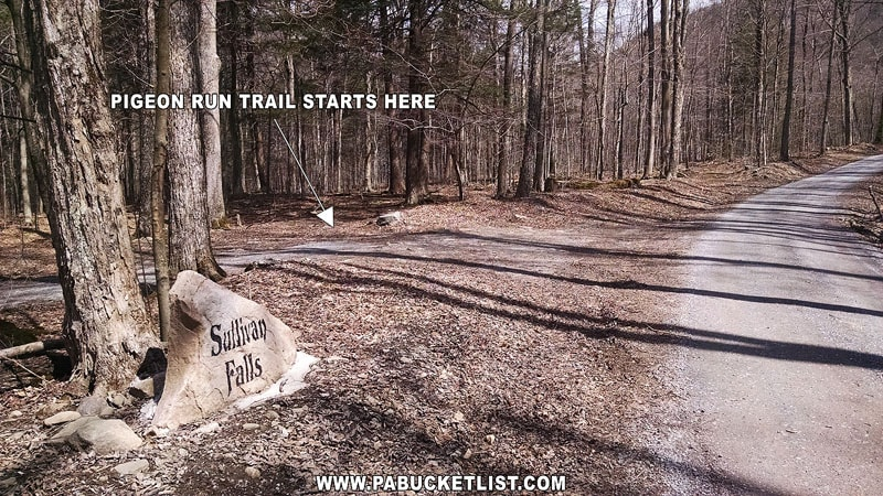 The parking area for the Pigeon Run Trail in Sullivan County.