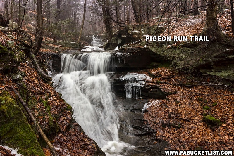 The Pigeon Run Trail on State Game Lands 13 in Sullivan County.