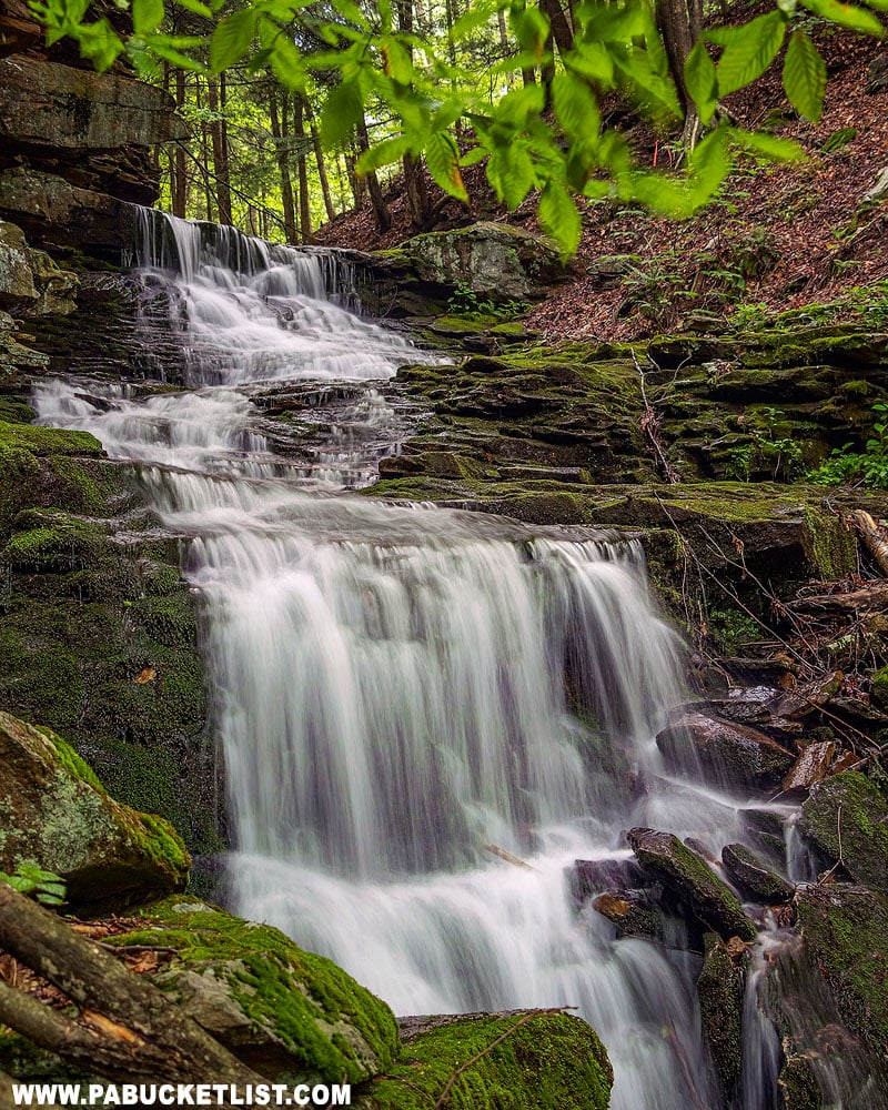 Alpine Falls in the Loyalsock State Forest.