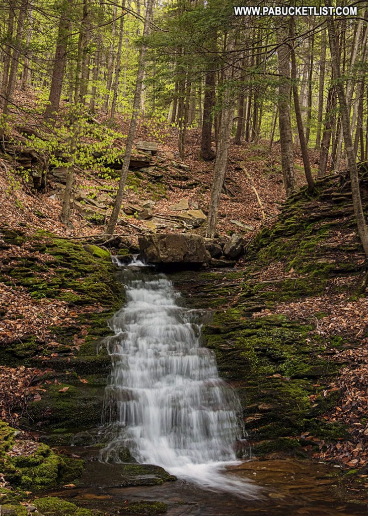 The upper tier of Alpine Falls in the Loyalsock State Forest.