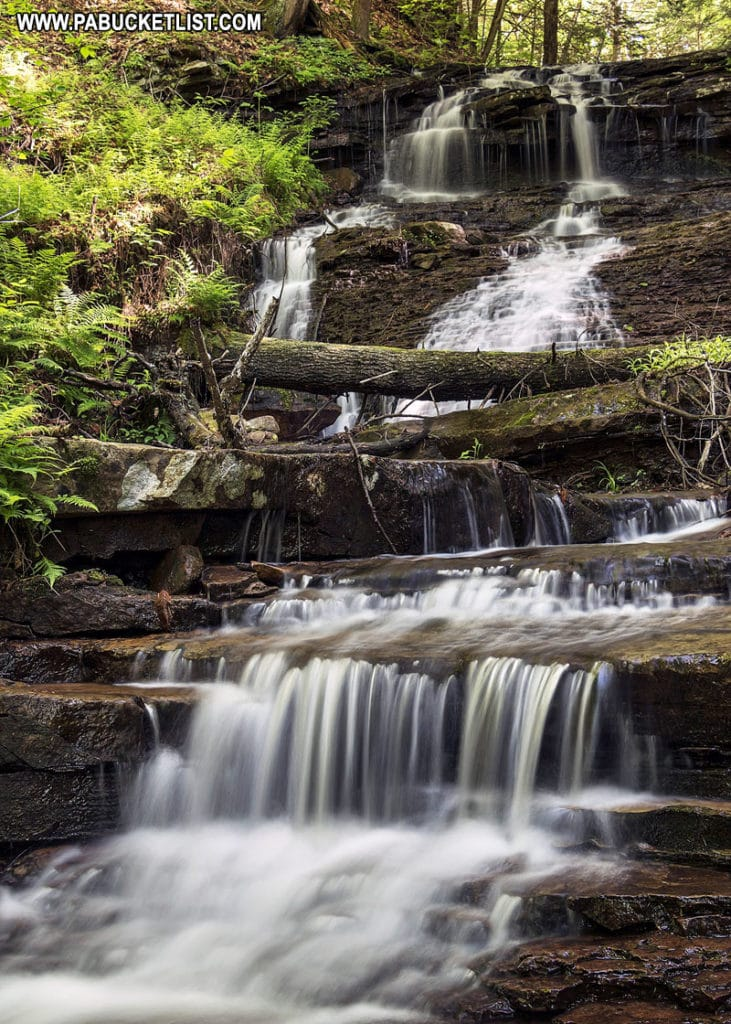 Unnamed waterfall along Coal Run in the Loyalsock State Forest.