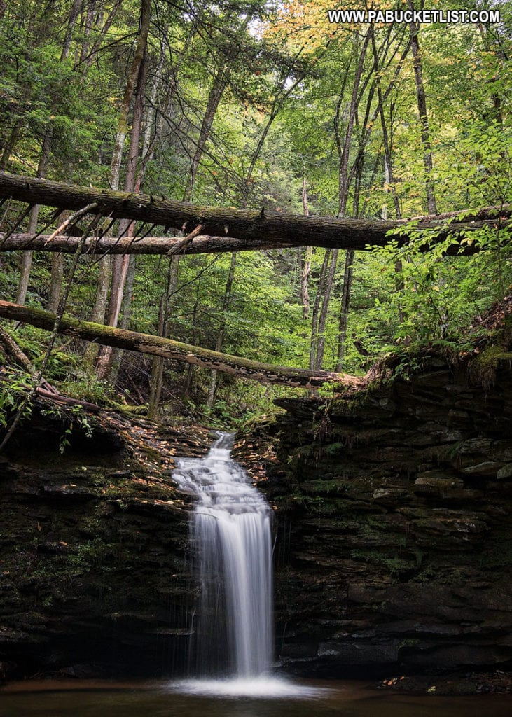 Cottonwood Falls along the Double Run Trail in the Loyalsock State Forest.