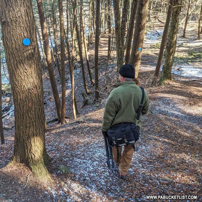 The blue-blazed Dutchman Falls Spur Trail.