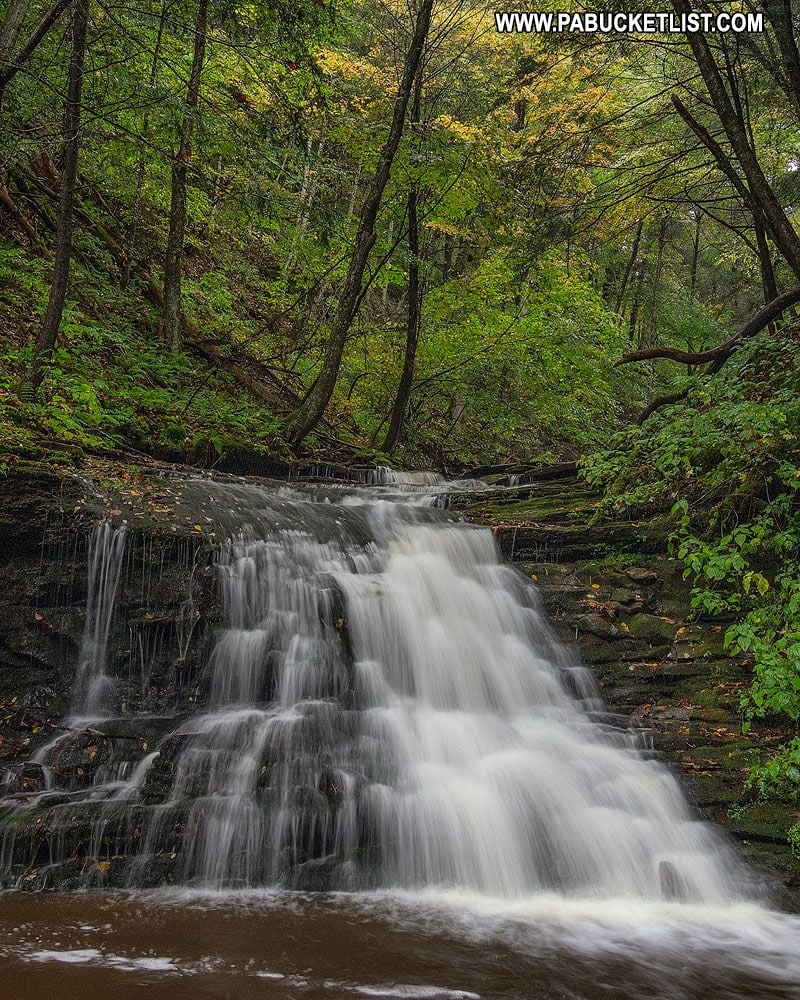 The uppermost waterfall along the Turkey Path at Leonard Harrison State Park.