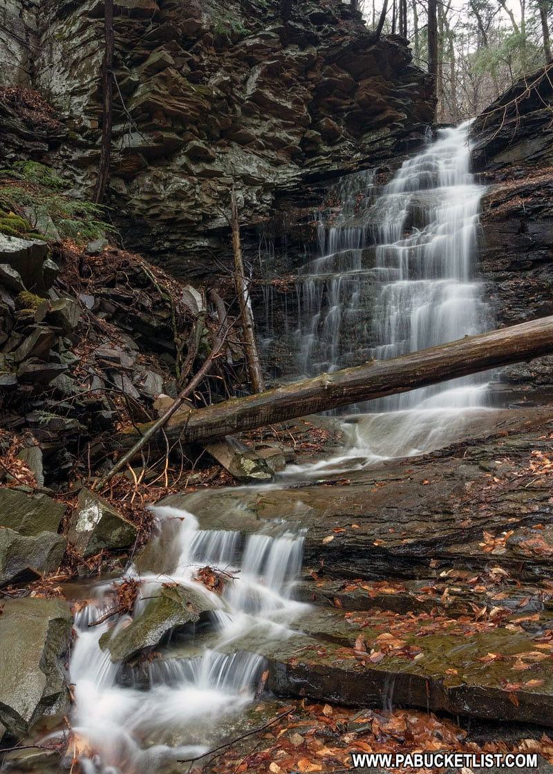 Gipson Falls on Falls Run in the Loyalsock State Forest.