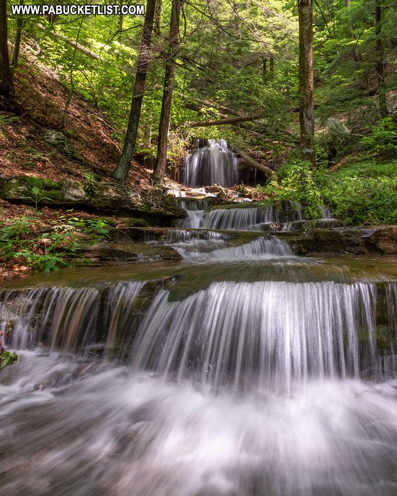 Downstream from Gipson Falls in Sullivan County, Pennsylvania.
