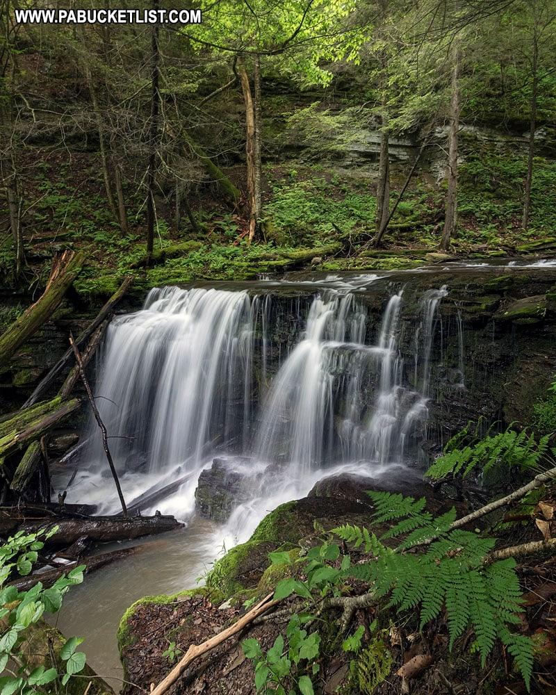 Logjam Falls on Fourmile Run in the Pine Creek Gorge Natural Area.