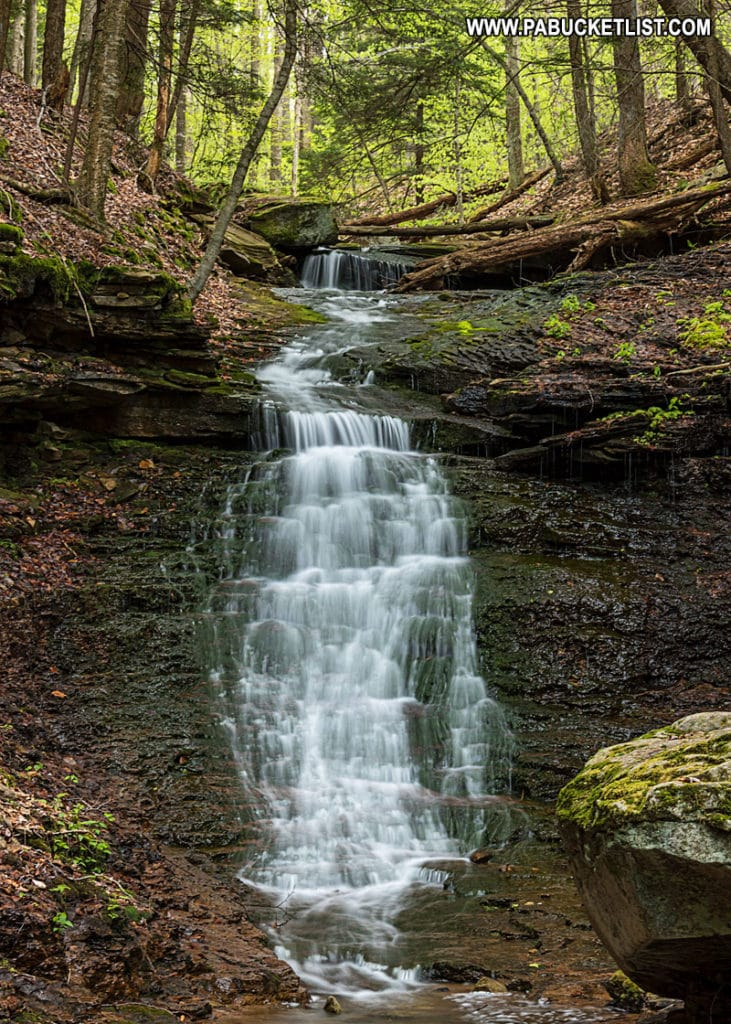 Mineral Springs Falls in the Loyalsock State Forest.