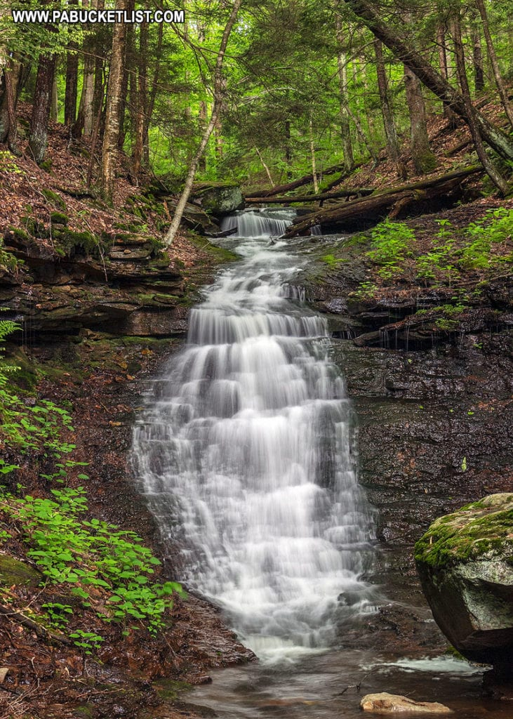 Mineral Spring Falls in Sullivan County PA