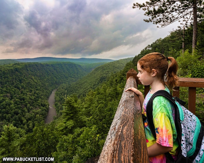 Looking out over the Pine Creek Gorge at Leonard Harrison State Park.