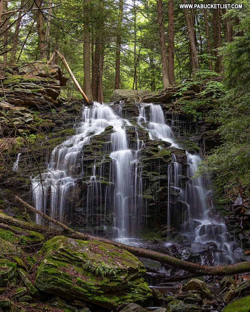 Tamarack Falls off of Loyalsock Road in the Loyalsock State Forest.