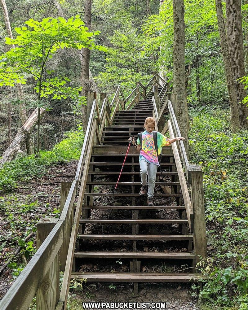 Navigating the steps along the Turkey Path at Leonard Harrison State Park.