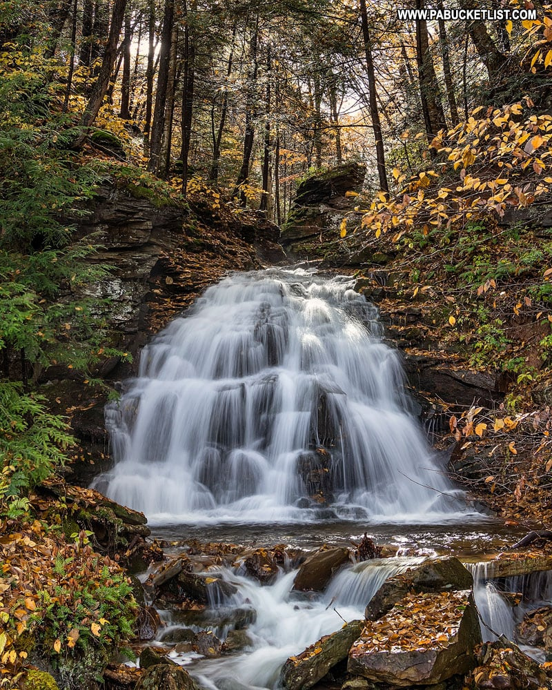 Fall foliage at Vinegar Run Falls in Sullivan County.