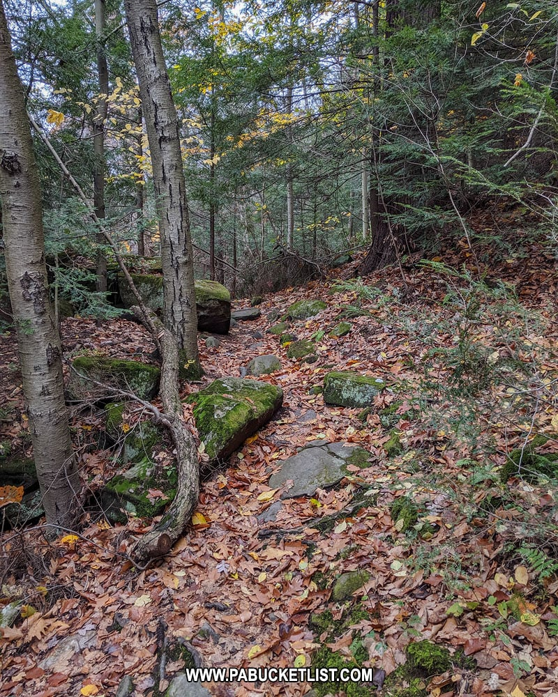 The Alpha Falls Trail at McConnells Mill State Park