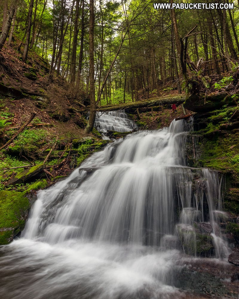 Waterfalls on Bear Run in Tioga County Pennsylvania