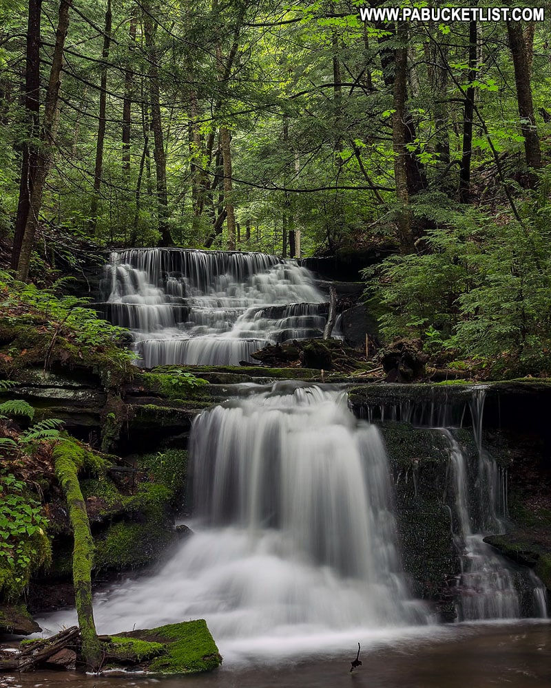 Bear Run Falls in the Pine Creek Gorge area of Pennsylvania