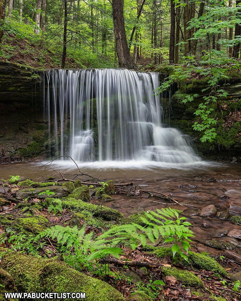 Small waterfall on Bear Run Tioga County