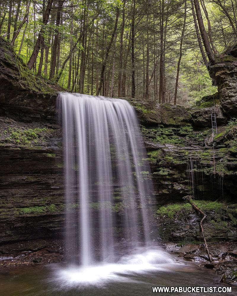 Campbells Run Falls in Tioga County PA