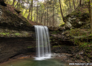 Campbells Run Falls in Tioga County Pennsylvania