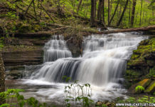 Darling Run Falls in Tioga County Pennsylvania
